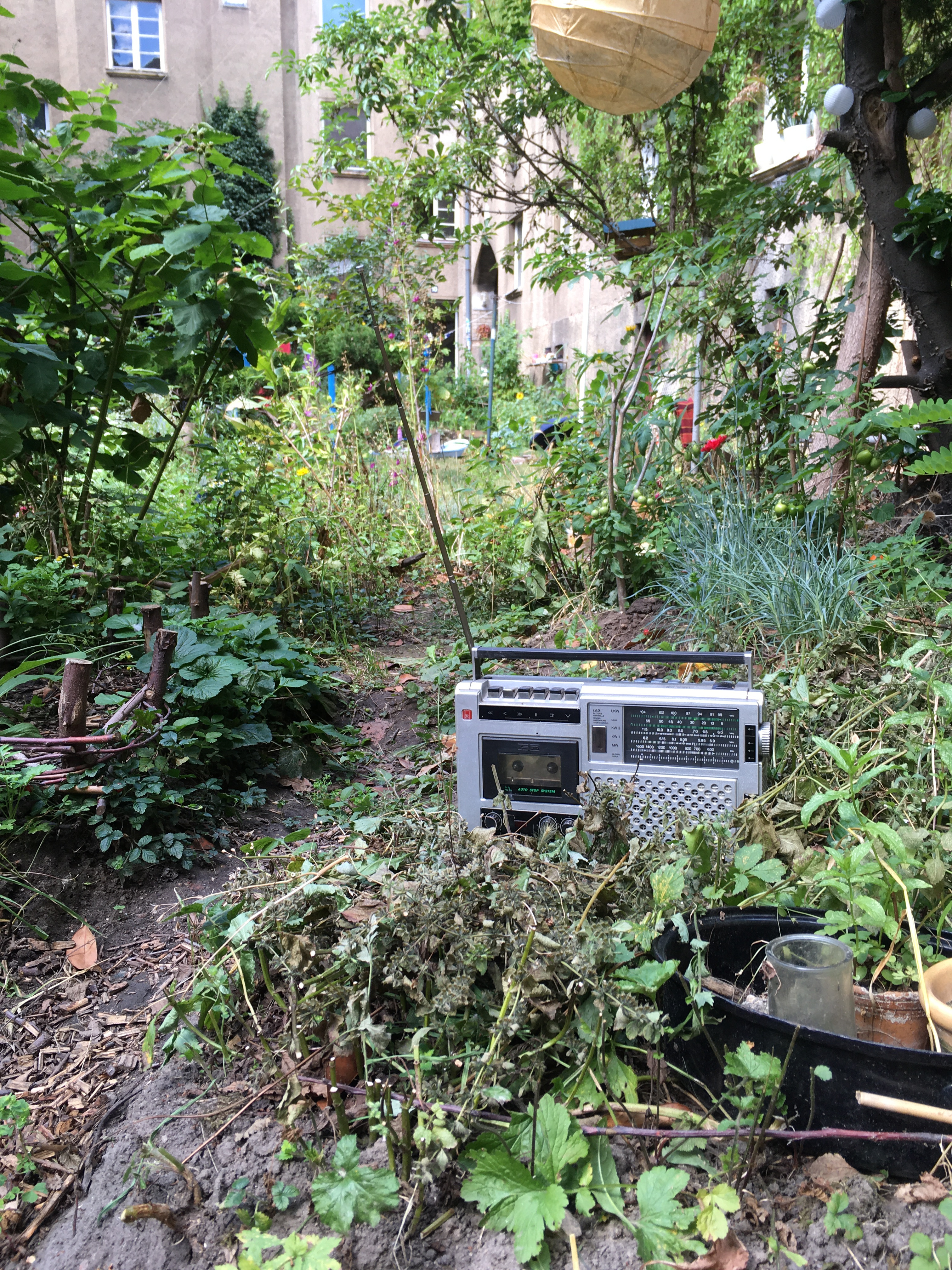 Gartensendung